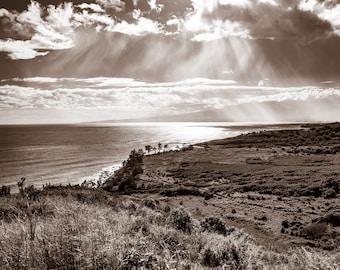 Coastal Rays, Maui, Hawaii