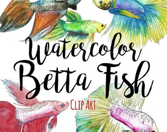 Watercolor Betta Fish Clip Art Commercial Use, Siamese Fighting Fish Clipart, INSTANT DOWNLOAD, Hand Drawn Fish Outline Clipart, BUNDLE