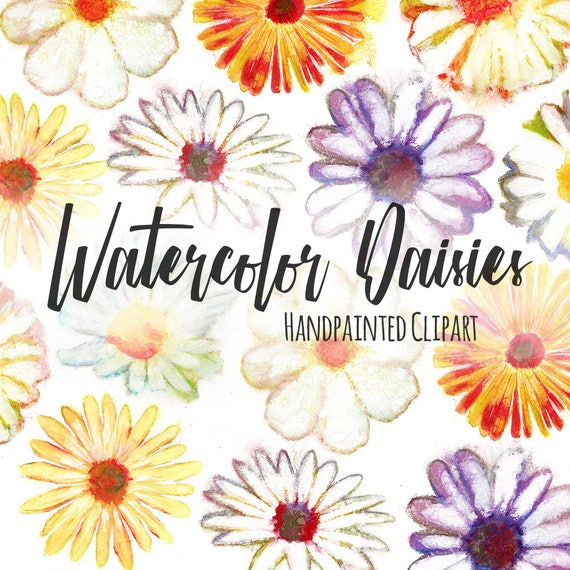 PNG Files Instant Digital Download Hand Painted Watercolor Daisies /& Tulips Printable Clip Art Spring Flowers Watercolor Flowers Clipart
