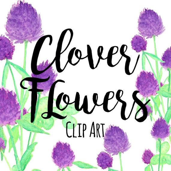 Purple clover floral flowers clipart st patricks day etsy image 0 mightylinksfo