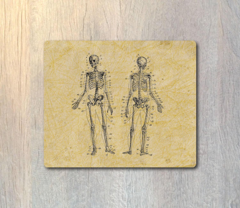 Cojín de ratón de esqueleto humano Anatomía humana ordenador | Etsy