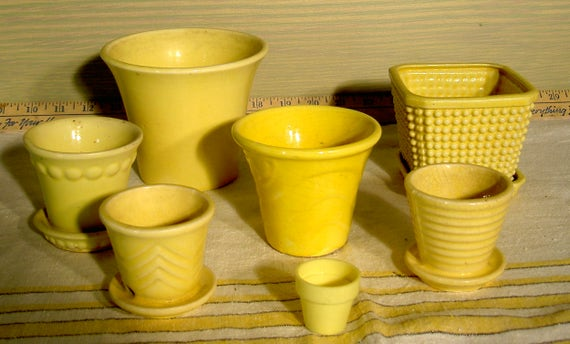 Yellow Ceramic Flower Pot Collection