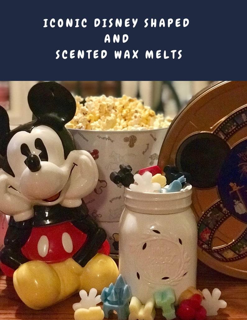 Scents of the South\ufe313oz Wax Melt\ufe31Leather Scent Scented Wax Melt Floral Scent\ufe31Soy Wax Melts Wedding Shower Gift Birthday Gift Texas