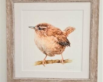 Bird Print- Wren Print- Bird Anniversary Gift - Wren Birthday Gift -Wildlife Gift- Easter Gift for Him & Her