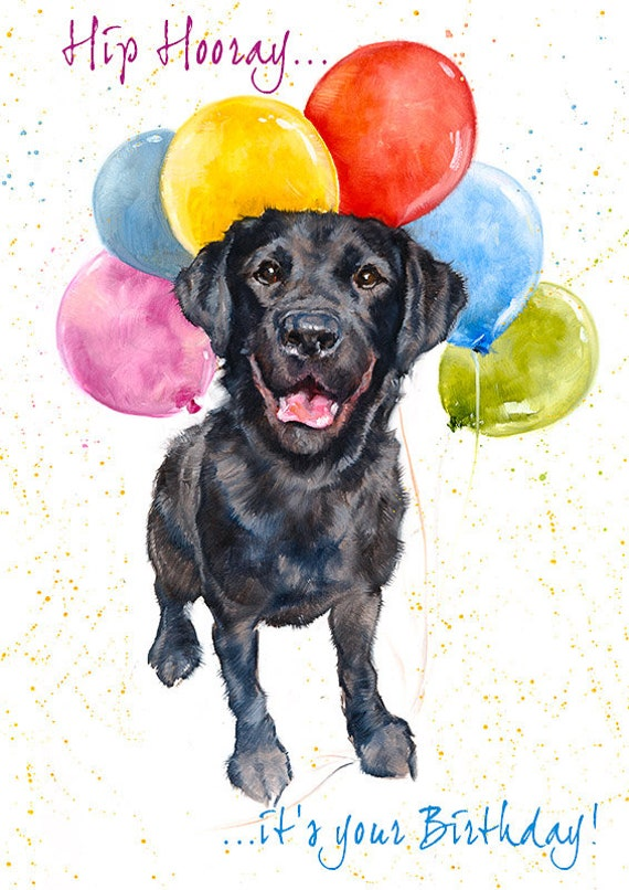 Labrador Birthday Greeting Card Dog Birthday Card Labrador Etsy