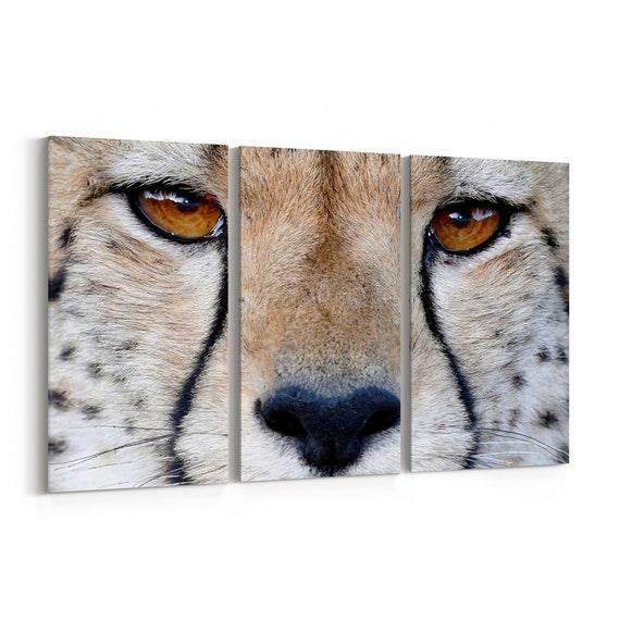 Cheetah Canvas Print Cheetah Wall Art Canvas Multiple Sizes Wrapped Canvas on Wooden Frame