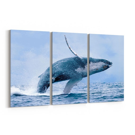Whale Canvas Print Whale Canvas Art Multiple Sizes Wrapped Canvas on Wooden Frame