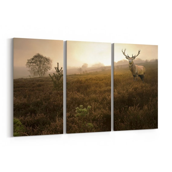 Red Deer Canvas Print Red Deer Wall Art Canvas Multiple Sizes Wrapped Canvas on Wooden Frame