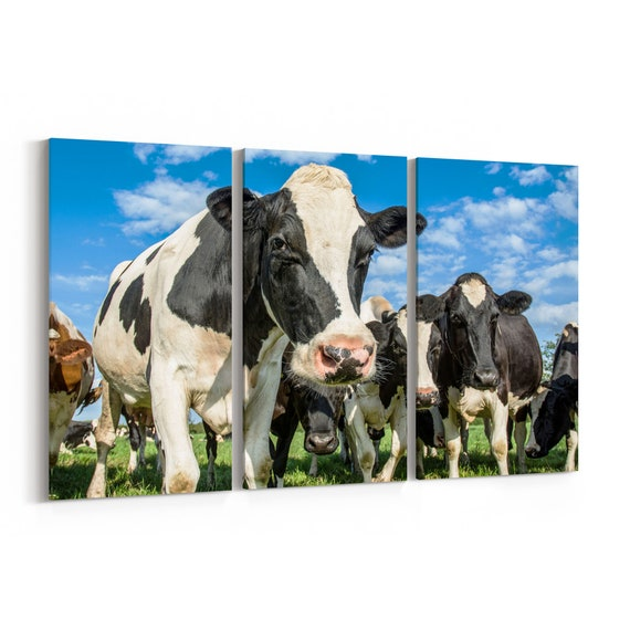 Cows Canvas Print Cows Wall Art Canvas Multiple Sizes Wrapped Canvas on Wooden Frame