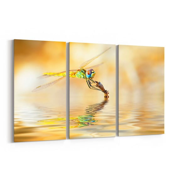 Dragonfly Canvas Print Dragonfly Wall Art Canvas Multiple Sizes Wrapped Canvas on Wooden Frame