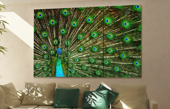 peacock wall art peacock canvas peacock canvas wall art peacock decor peacock wall decor peacock art peacock large wall art