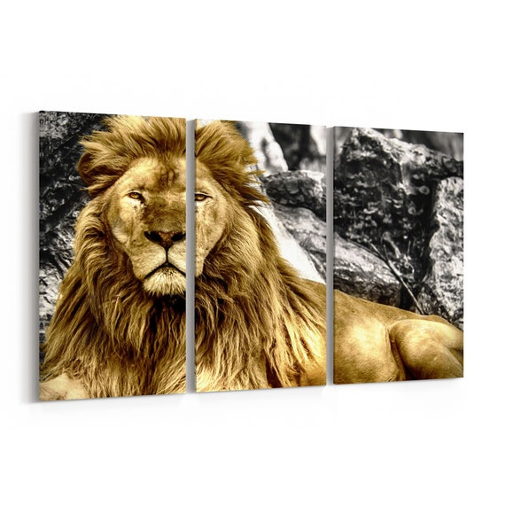 Lion Canvas Art Lion Wall Art Canvas Multiple Sizes Wrapped Canvas on Wooden Frame
