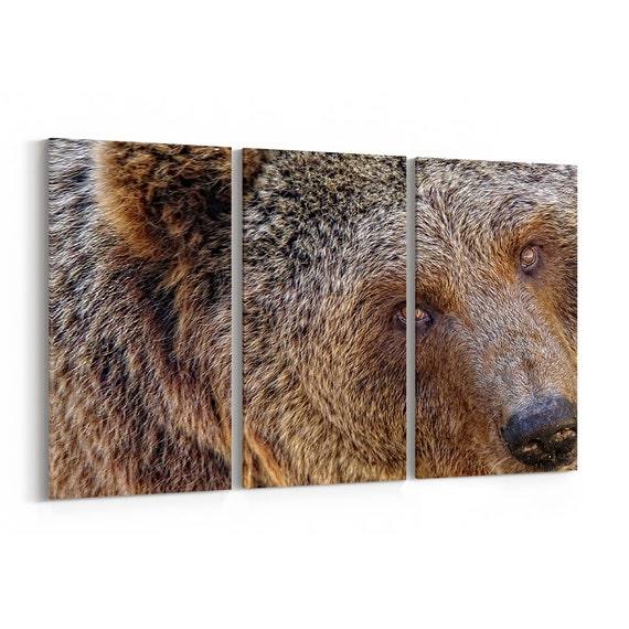 Bear Canvas Print Bear Wall Art Canvas Multiple Sizes Wrapped Canvas on Wooden Frame
