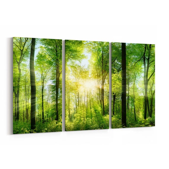 Forest Wall Art Canvas Forest Canvas Print Multiple Sizes Wrapped Canvas on Wooden Frame