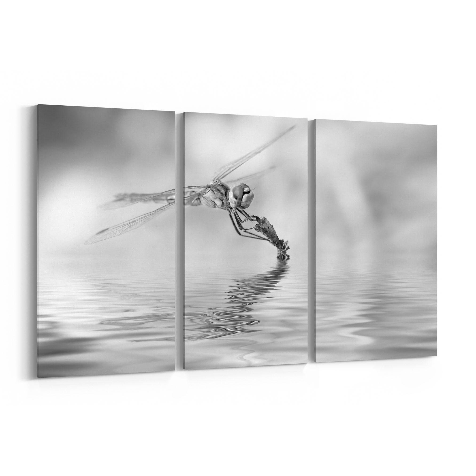 Dragonfly Canvas Print Dragonfly Wall Art Canvas Multiple Sizes