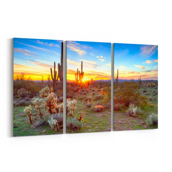 Sonoran Desert Canvas Print Sonoran Desert Wall Art Canvas Multiple Sizes Wrapped Canvas on Wooden Frame
