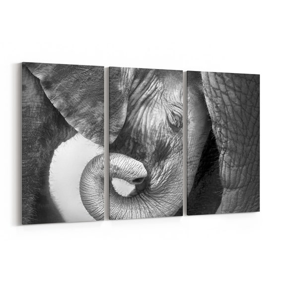 Baby Elephant Canvas Print Baby Elephant Wall Art Canvas Multiple Sizes Wrapped Canvas on Wooden Frame