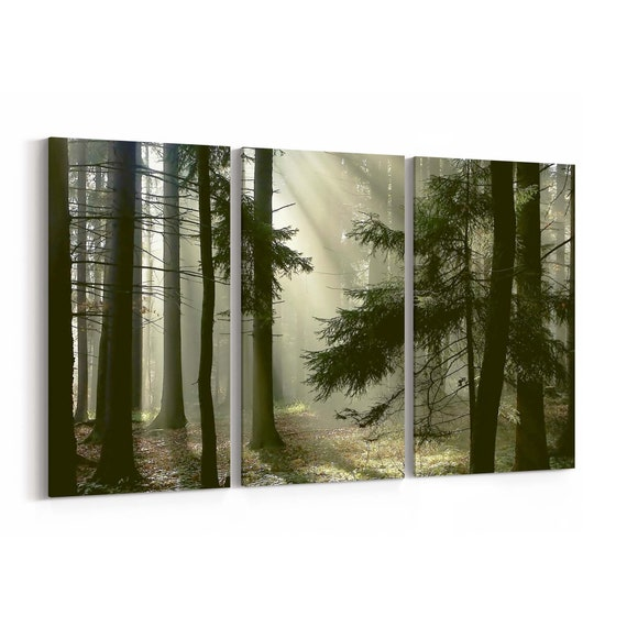 Forest with Morning Sun Rays Canvas Art Forest with Morning Sun Rays Wall Art Canvas Multiple Sizes Wrapped Canvas on Wooden Frame