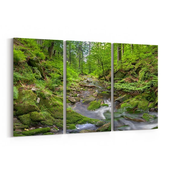 Forest Creek Canvas Print Forest Creek Wall Art Canvas Multiple Sizes Wrapped Canvas on Wooden Frame