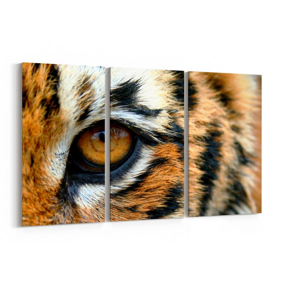 Tiger Canvas Print Tiger Wall Art Canvas Multiple Sizes Wrapped Canvas on Wooden Frame