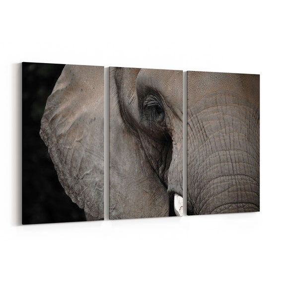 Elephant Canvas Print Elephant Canvas Art Multiple Sizes Wrapped Canvas on Wooden Frame