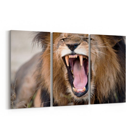 Lion Wall Art Canvas Lion Canvas Print Multiple Sizes Wrapped Canvas on Wooden Frame