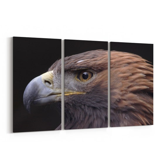Golden Eagle Canvas Print Golden Eagle Wall Art Canvas Multiple Sizes Wrapped Canvas on Wooden Frame