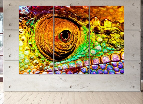 chameleon  print  on canvas wall art colorful reptilian eye photo art work framed art artwork