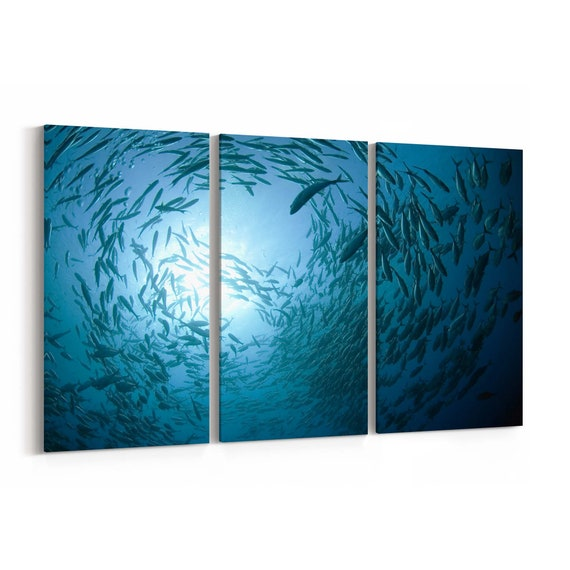 Fish in the ocean Canvas Print Fish in the ocean Wall Art Canvas Multiple Sizes Wrapped Canvas on Wooden Frame