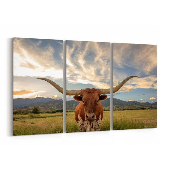 Texas Longhorn Canvas Print Texas Longhorn Wall Art Canvas Multiple Sizes Wrapped Canvas on Wooden Frame