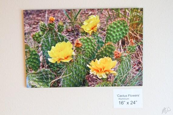 Cactus Flowers Colorado Springs Wall Art Metal Print Etsy