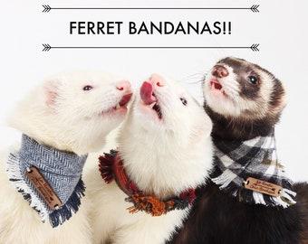 Ferret Bandanas