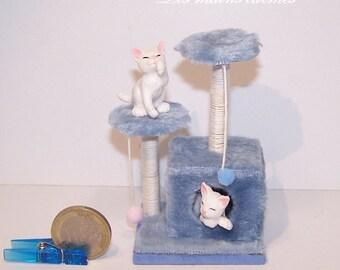 Miniature blue cat tree 10 and 12eme