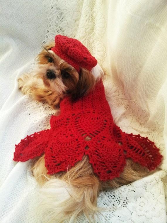 Digital Pattern Crochet Red Pineapple Lace Motif Dog Dress Etsy