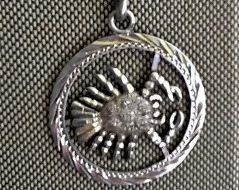 Sterling Silver 3//4 Inch Nashville Predators Large Enamel Pendant w//Necklace