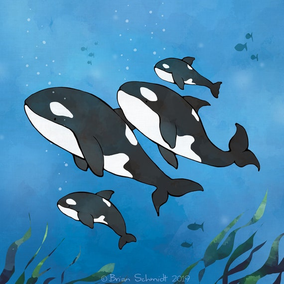 Orca Killer Whales Sea Animals Dolphin Family Wall Art Canvas Pictures