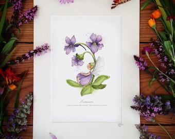 Butterwort - Illustrated Art Print