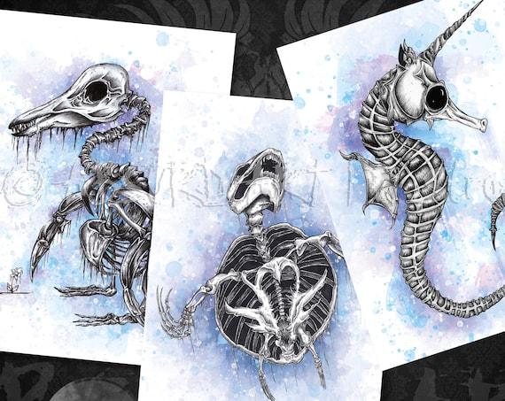 """Knochentierchen 3er Set: """"Seepferdchen"""" , """"Pinguin"""" und """"Schildkröte"""" (DIN A3)"""