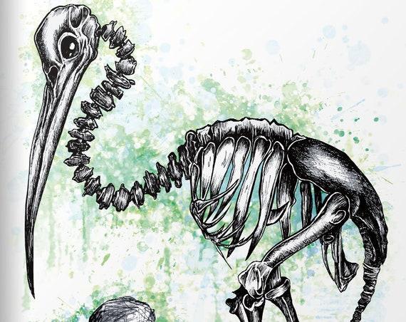 """Kiwi"" Serie: Knochentierchen Print"