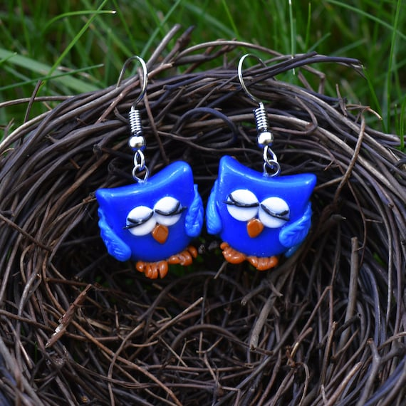 Blue Bird Earrings Funny Sleep Owl Jewelry Sterling Silver Etsy