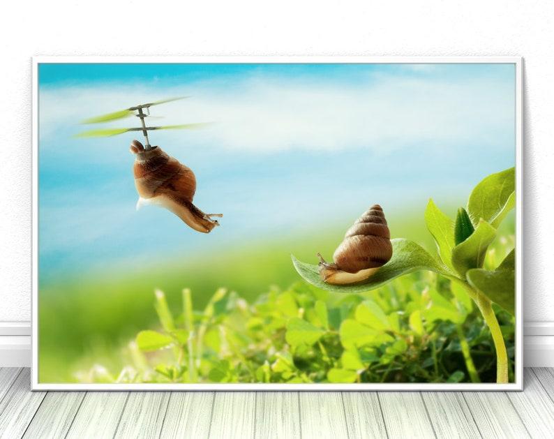 Snail evolution print Nursery wall art decor Animal print image 0