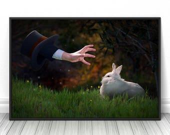 Magic bunny hat print, rabbit, Fine art decor, living room photograph, cool posters, fits Ikea, Creative photography wall art