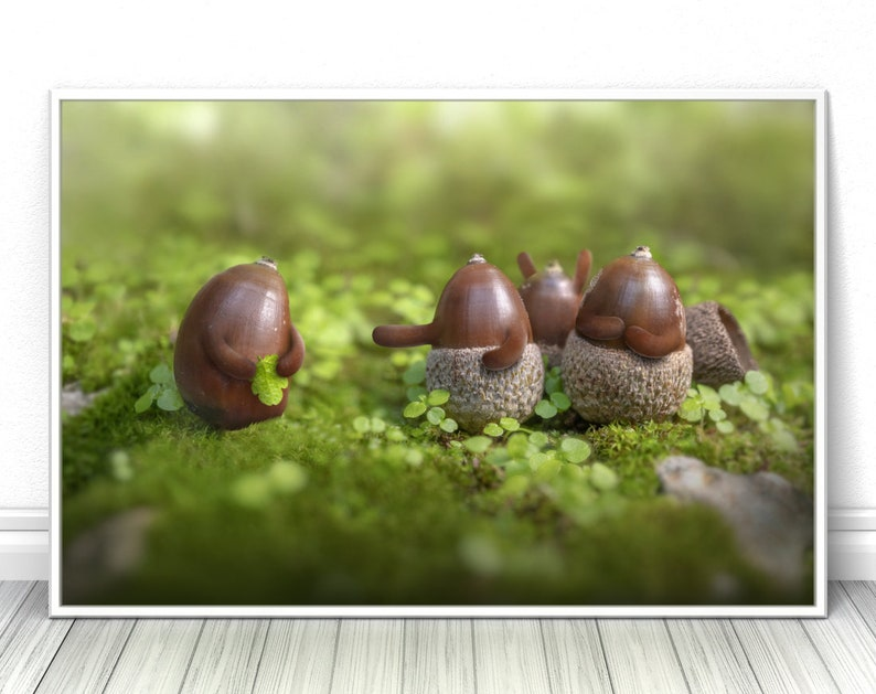 Naked Acorn Poster Funny unique Creative Photography image 0
