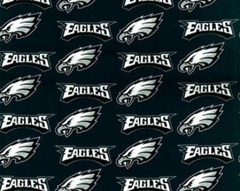 """Valance, Curtain Panel, Matching Pillow Cover """"Philadelphia Eagles"""""""