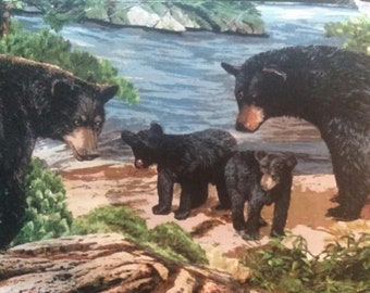 """Valance, Curtain Panel, Matching Pillow Cover """" Bears"""""""