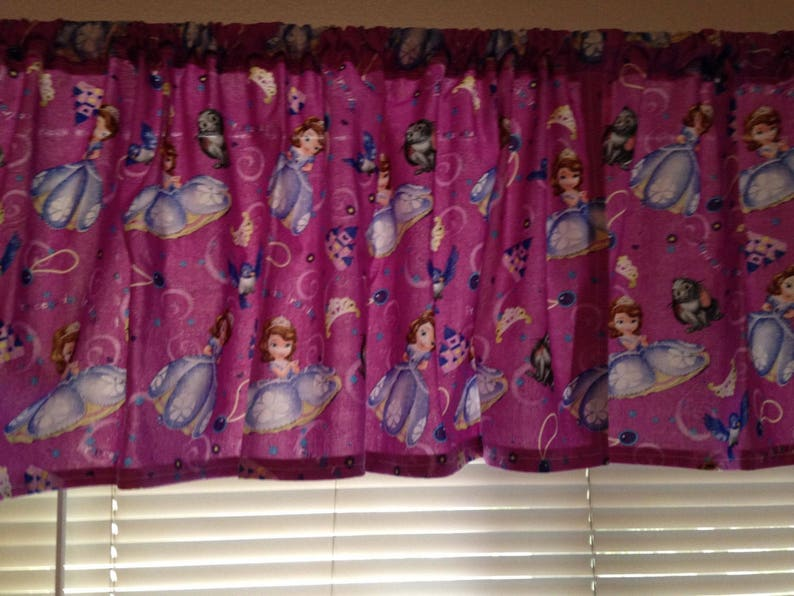 Curtain Panel Valance Matching Pillow Cover Chip and Dale