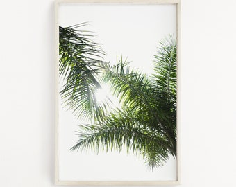 Palm Trees Coconuts Tanned Skin Sunsets Hot Nights Salt Etsy