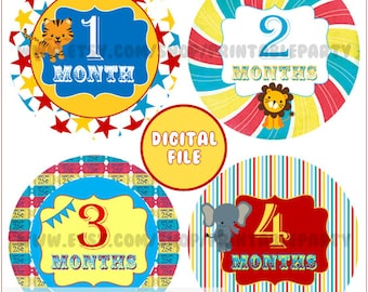 Digital Self-Print Monthly Milestone Onesie Stickers - Carnival Circus