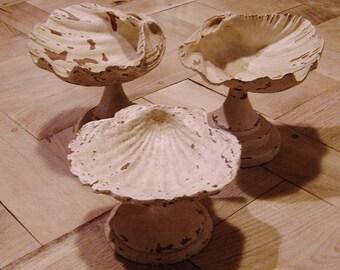 three shells wooden storage