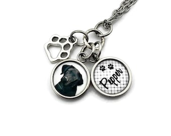 Pet Memorial Jewelry, Dog Loss Necklace, Pet Loss Gift, Pet Memorial Necklace with Photo, Cat Remembrance Jewelry, Pet Memorial, Loss of Pet